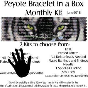 Peyote Bracelet in a Box Monthly Kit June 2018 Kit B