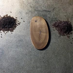 wood slice wrk 1
